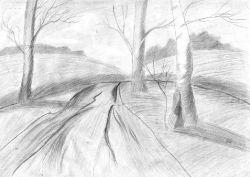 Лесная дорога_1